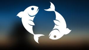 Balık Burcu Hakkında